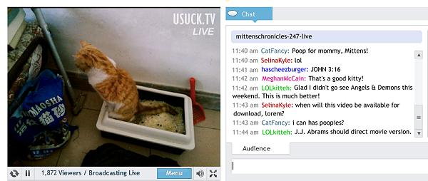 From The Mittens Chonicles: Live 24/7 web cam of Mittens' litter box